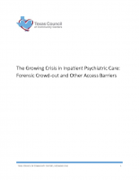 Inpatient Psychiatric Care Issue Brief 12-16-16 (Updated)