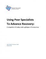 Peer Services Report – 11/2013