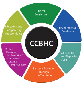 CCBHC Color Wheel Graphic. Image from National Council for Behavioral Health.